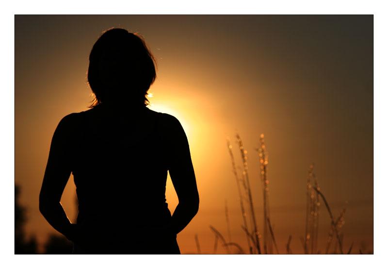 >>Into the Sun