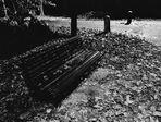 inverno al parco lambro