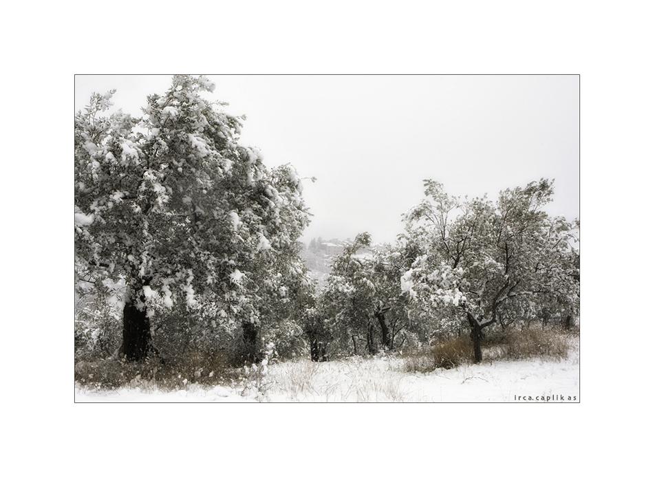 Inverno in Umbria II