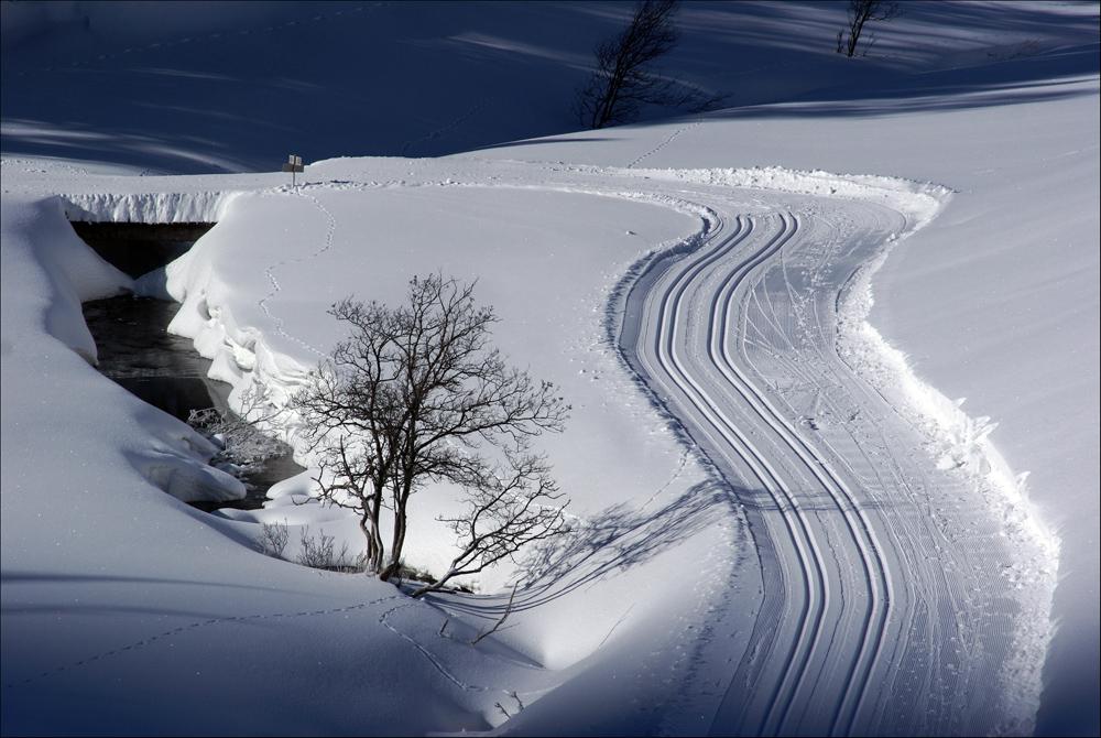 invernopaesaggio