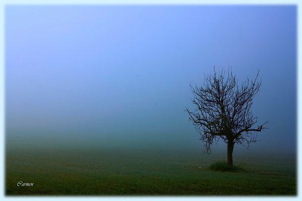 Invierno (DEDICADA A MELKART)