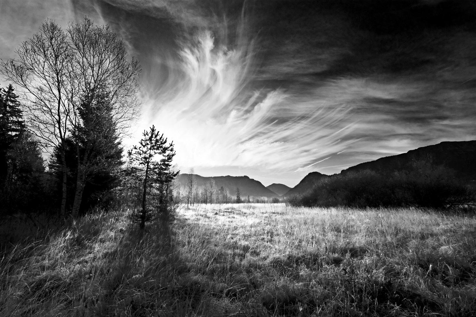 Inzeller Moor