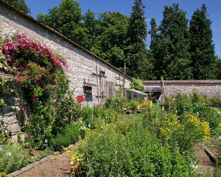 Inzigkofen. Der Klostergarten