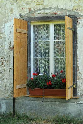 Inzigkofen, Kräutergarten: Geranien – Fenster