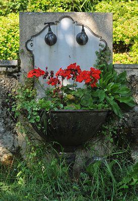 Inzigkofen, Kräutergarten: Geranien – Waschbecken