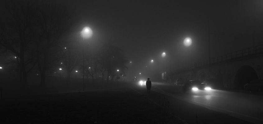 io e lui nella nebbia