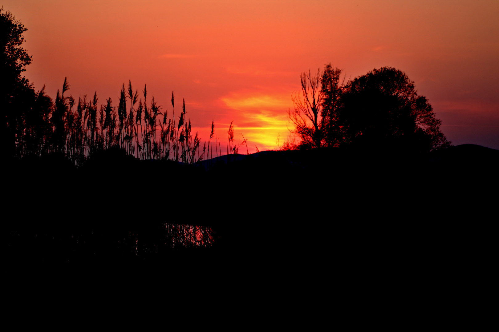 Ipoly - Sonnenuntergang im Frühling 2