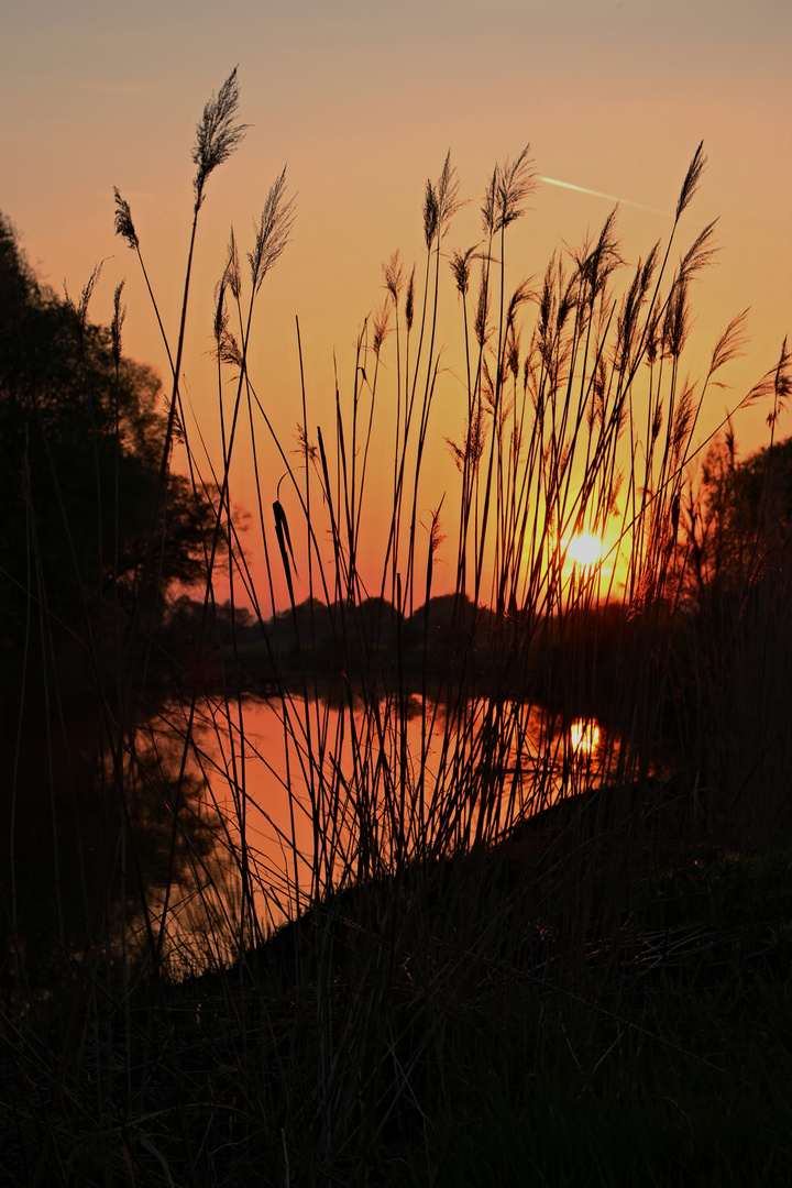Ipoly - Sonnenuntergang im Frühling 3