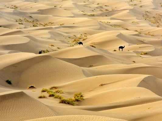Iran Kavir Desert Farahzad