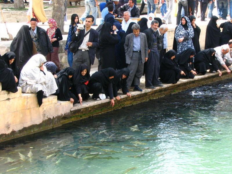 Iranian Pilgrims