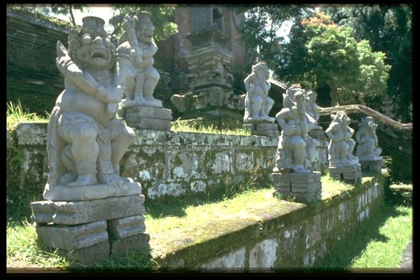 Irgendwo im Dschungel von Bali