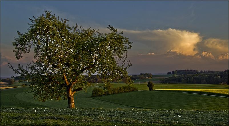 ...irgendwo im Landkreis Mühldorf/Oberbayern