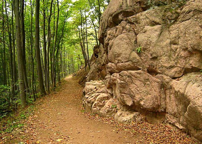 Irgendwo im Thüringer Wald
