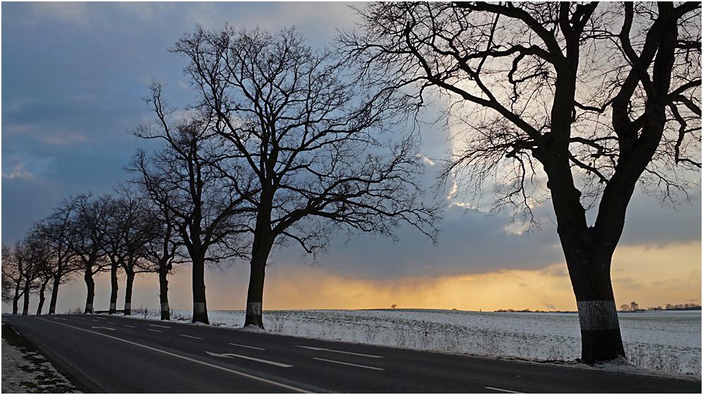 Irgendwo in Brandenburg 11