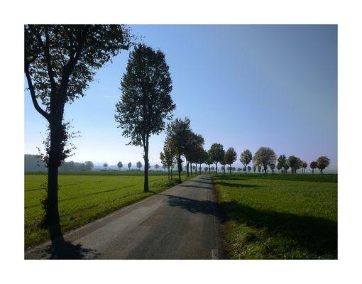 ...irgendwo in Westfalen #12...
