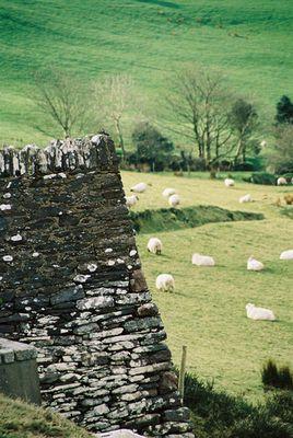 Irische Mauern
