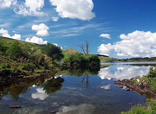 irischer See
