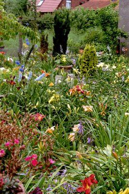Irisgarten Schöppingen - Überblick
