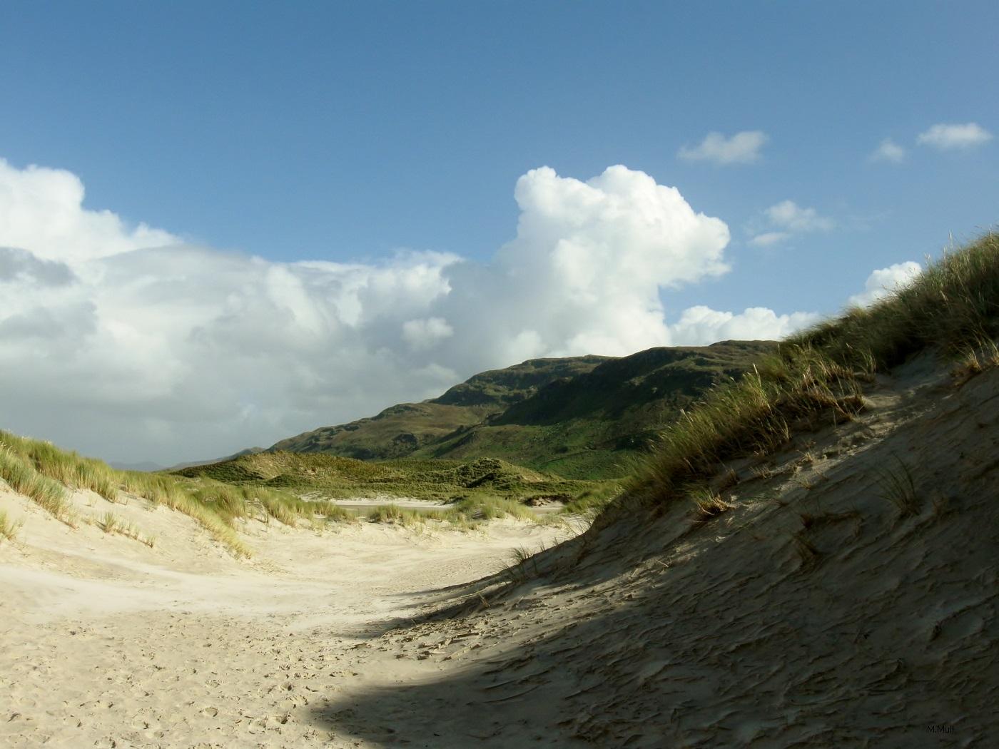 Irish coastline V