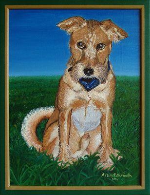 Irish Terrier - reload