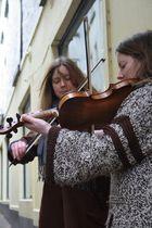 Irish Violin