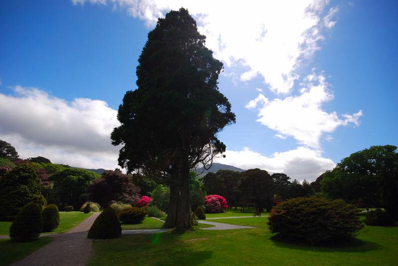 Irland 2007 - Killarney Nationalpark - ParkGarten Muckross House