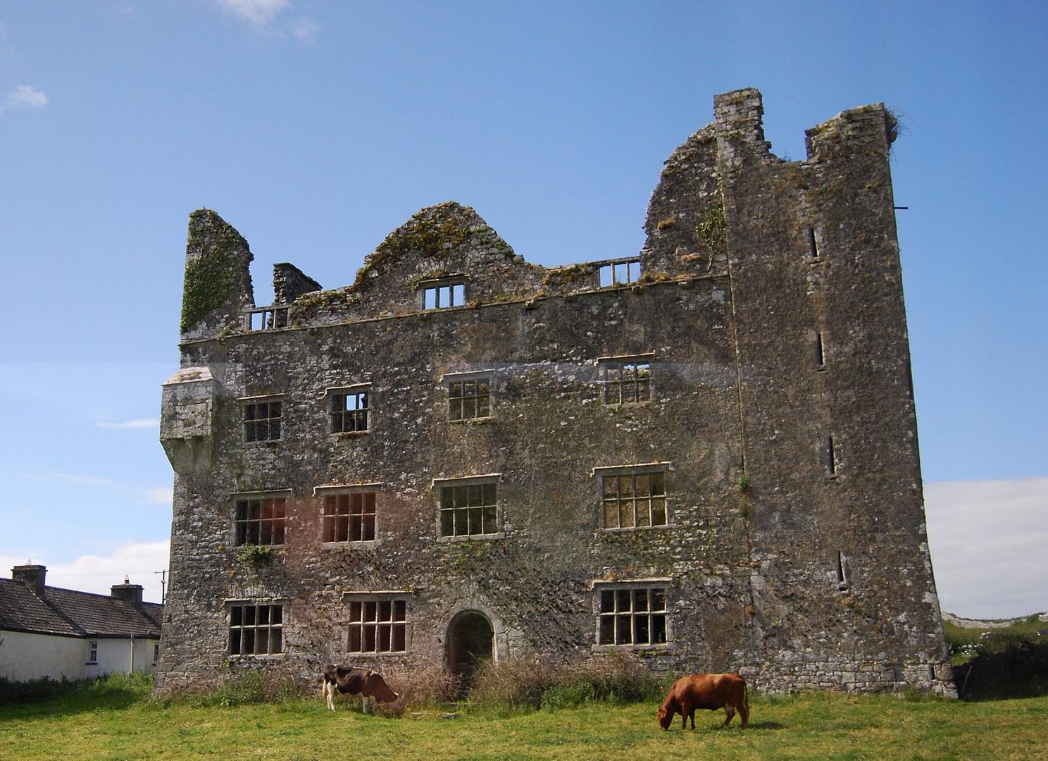 Irland - die Ruine