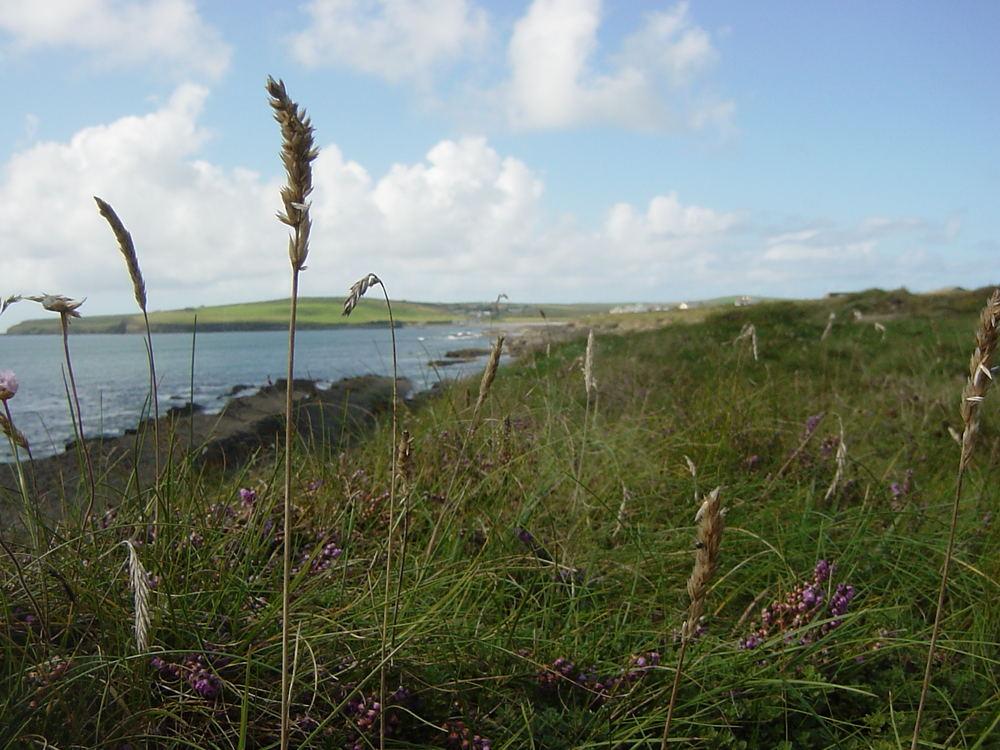 Irland - Küstenstreifen