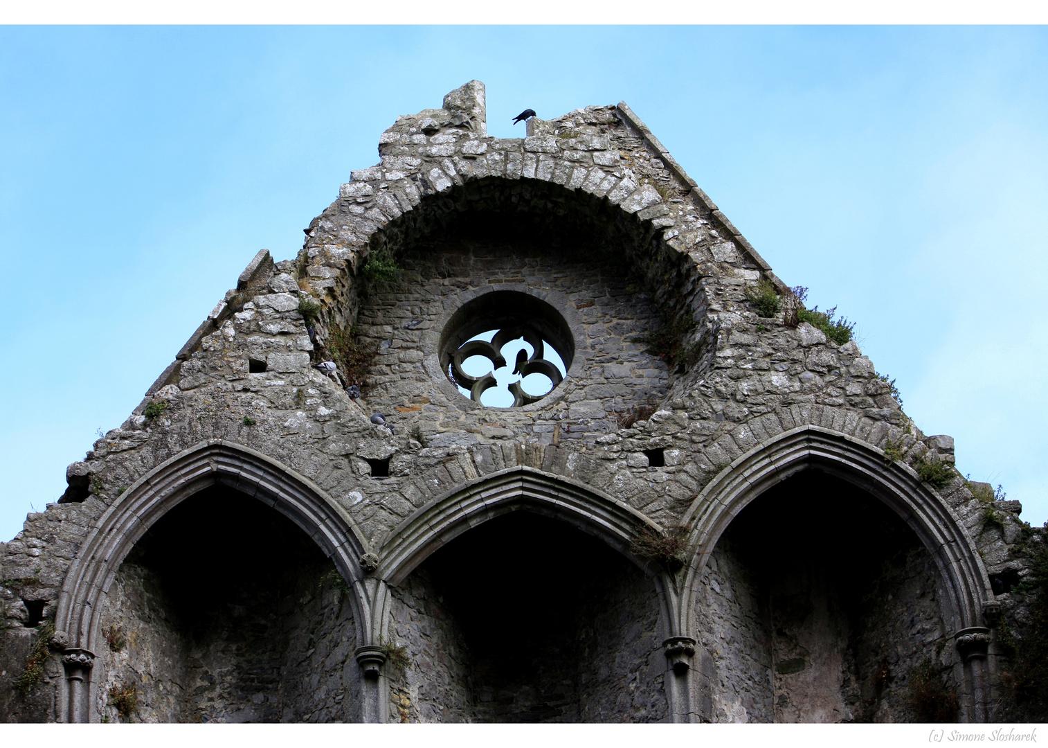 ~ Irland : Rock of Cashel I ~