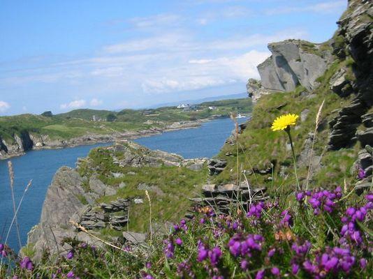 irland- westküste