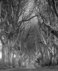 Irlandreise 2016...008