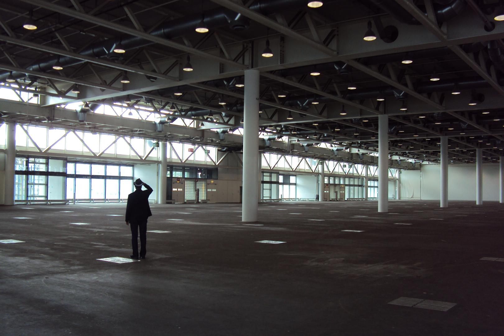 Irrläufer auf der ART 2011 in Basel