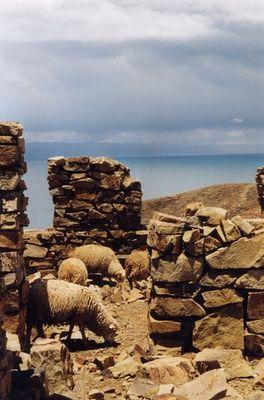 Isla del Sol, Lago Titikaka