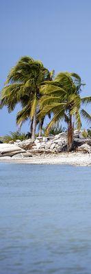 Isla Holbox - Cabo Catoche