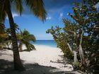 Isla Saona Strandausschnitt