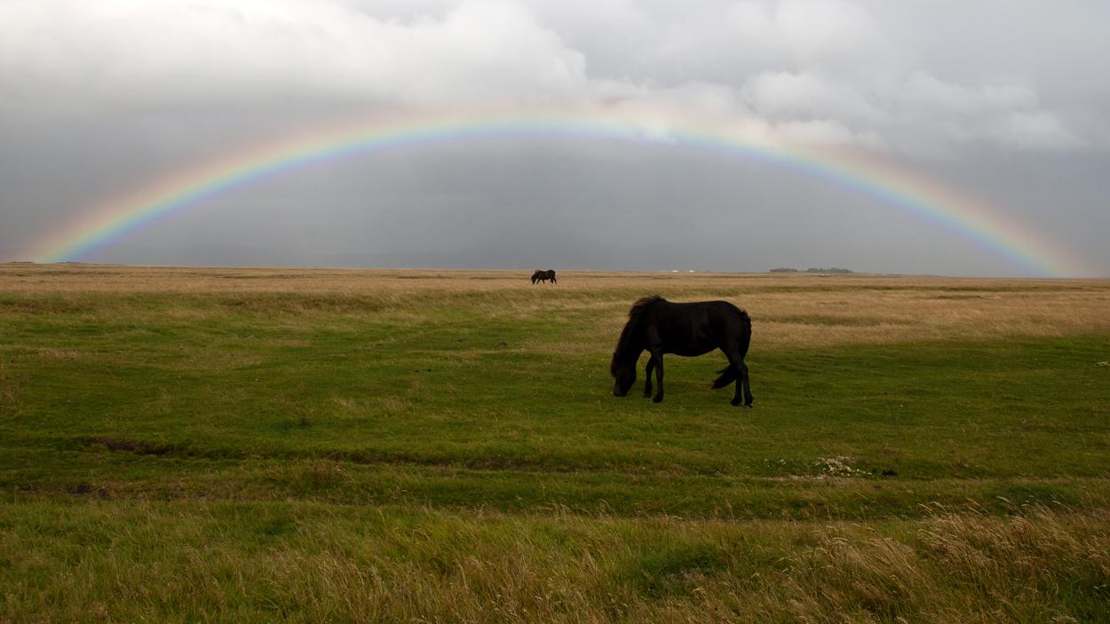 Isländer unterm Regenbogen