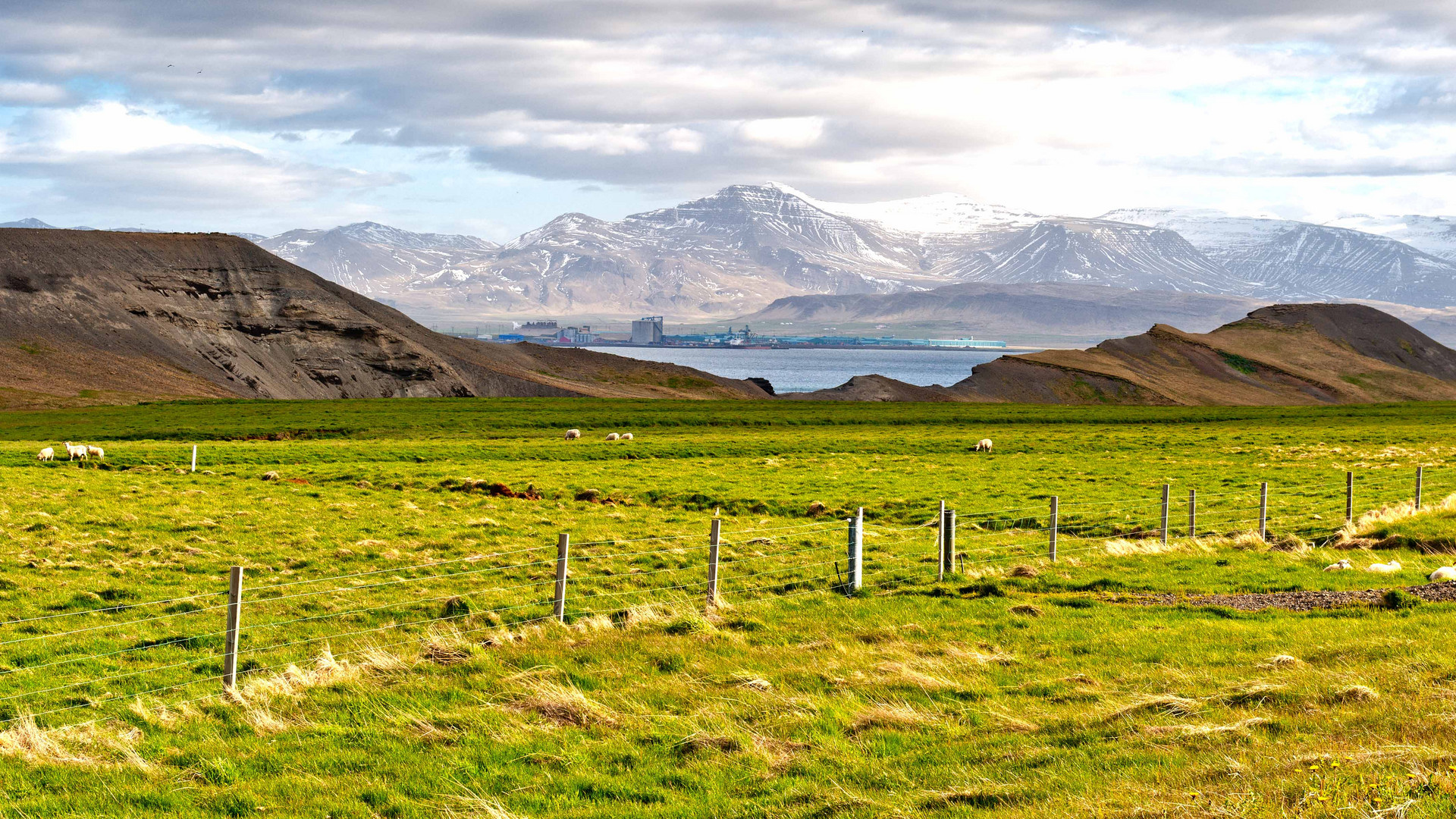 Island 2011 (1)