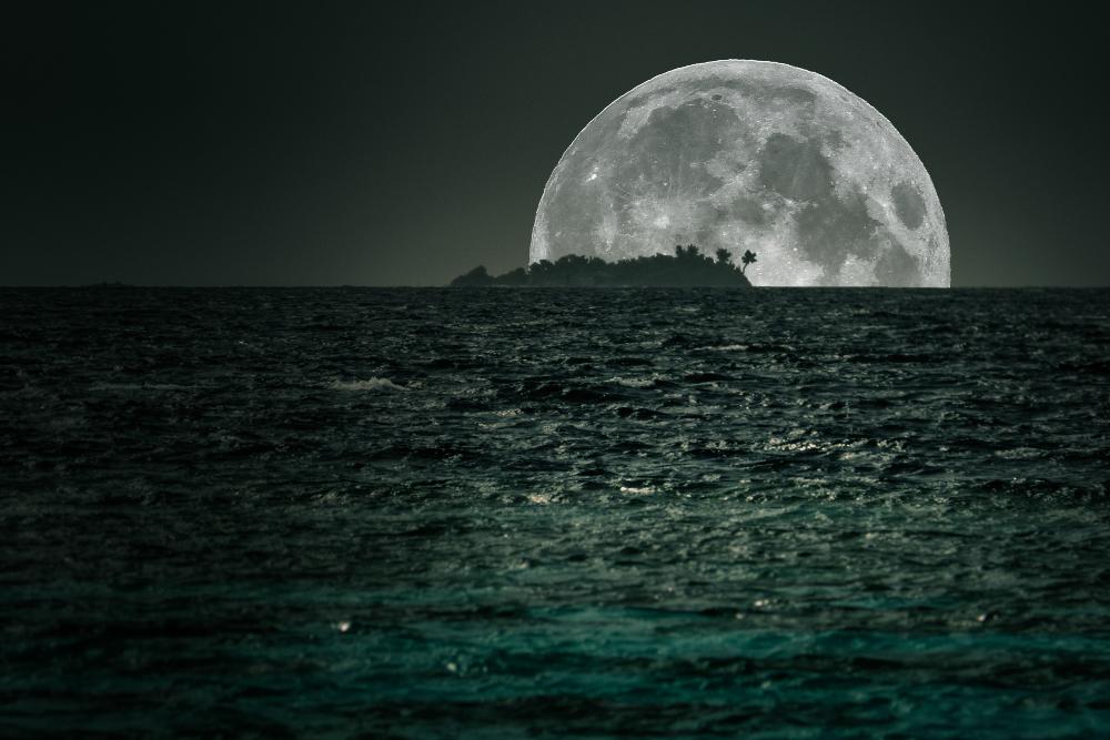 Island in the Dark