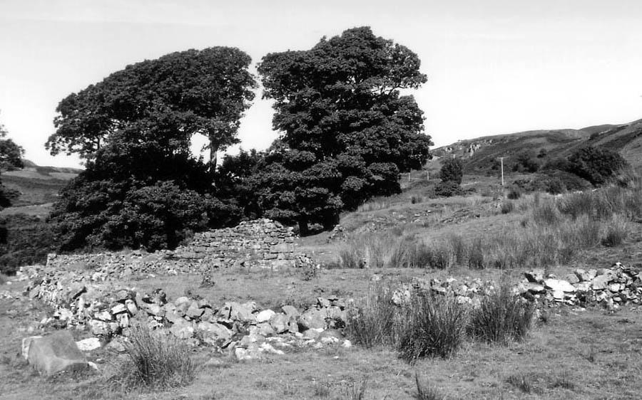 Island of Kerrera (3)