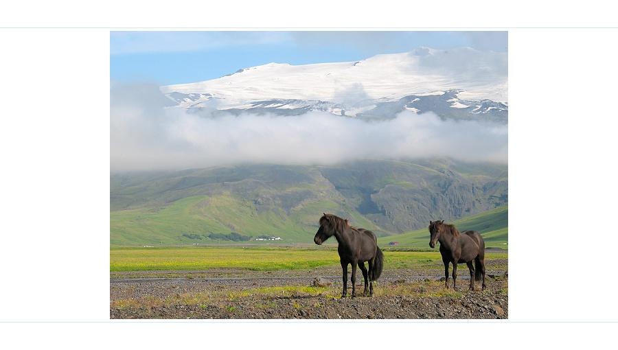 Island - warten bis der Nebel geht