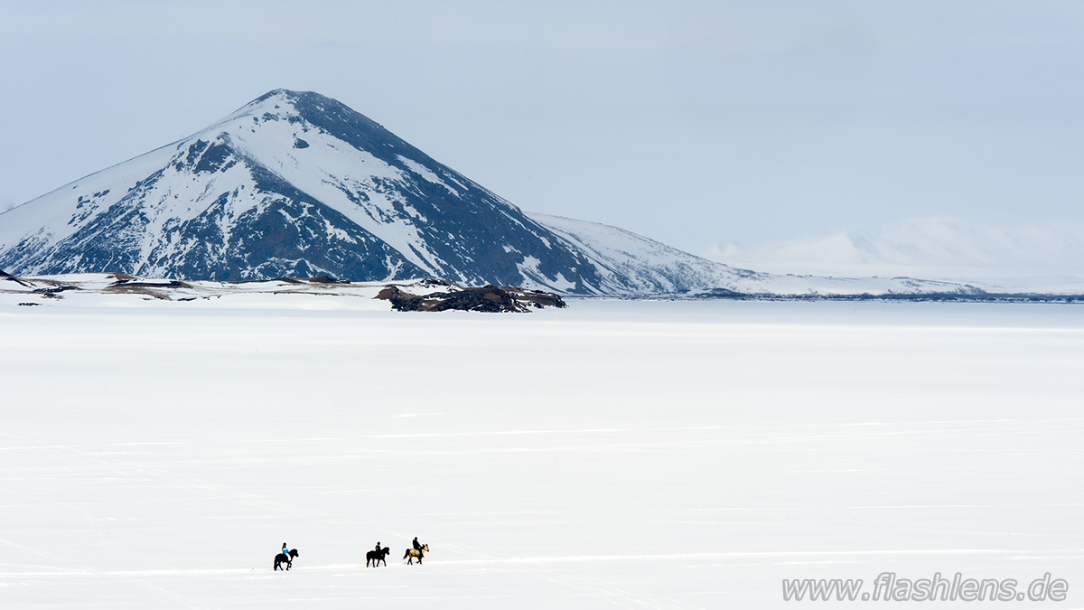 Island zu Pferd