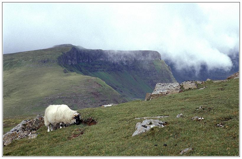 Isle of Skye - Trotternish Halbinsel