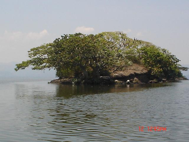 ISLOTE EN LA LAGUNA DE CATEMACO, FORMA CAPPPRICHOSA