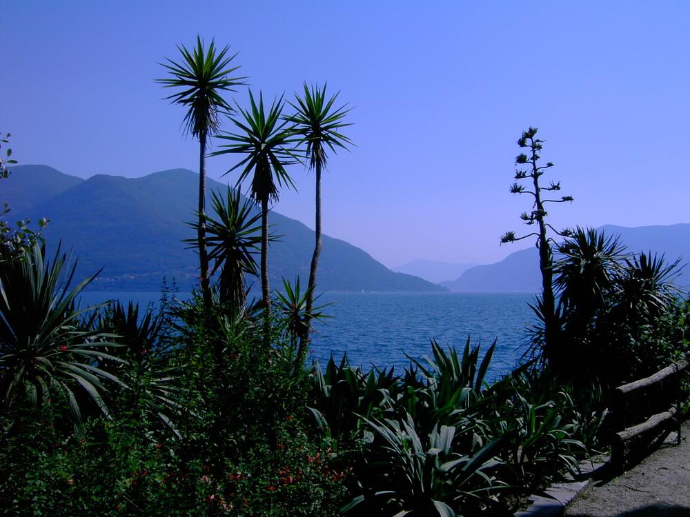 Isola di Brissago 2