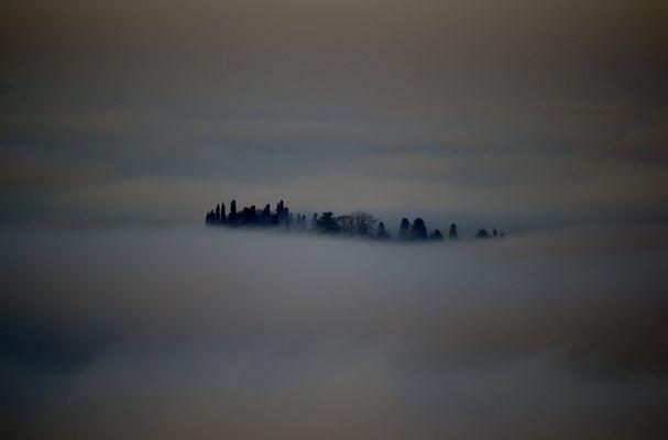 Isola nella nebbia