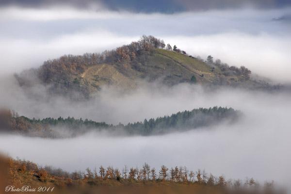 Isole nella Nebbia ...