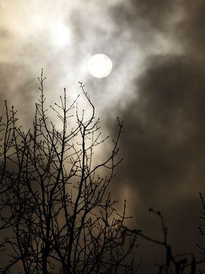 Ist die Sonne doch eine Scheibe?