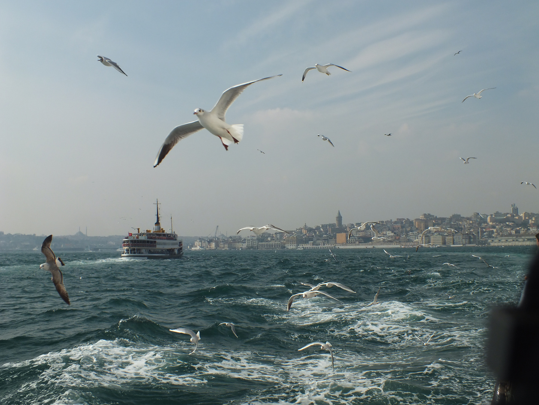Istanbul, Überfahrt Bosporos