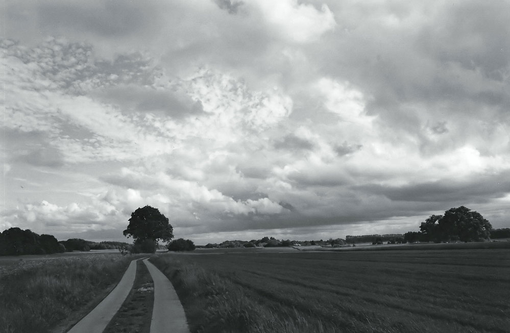 it´s a long way home