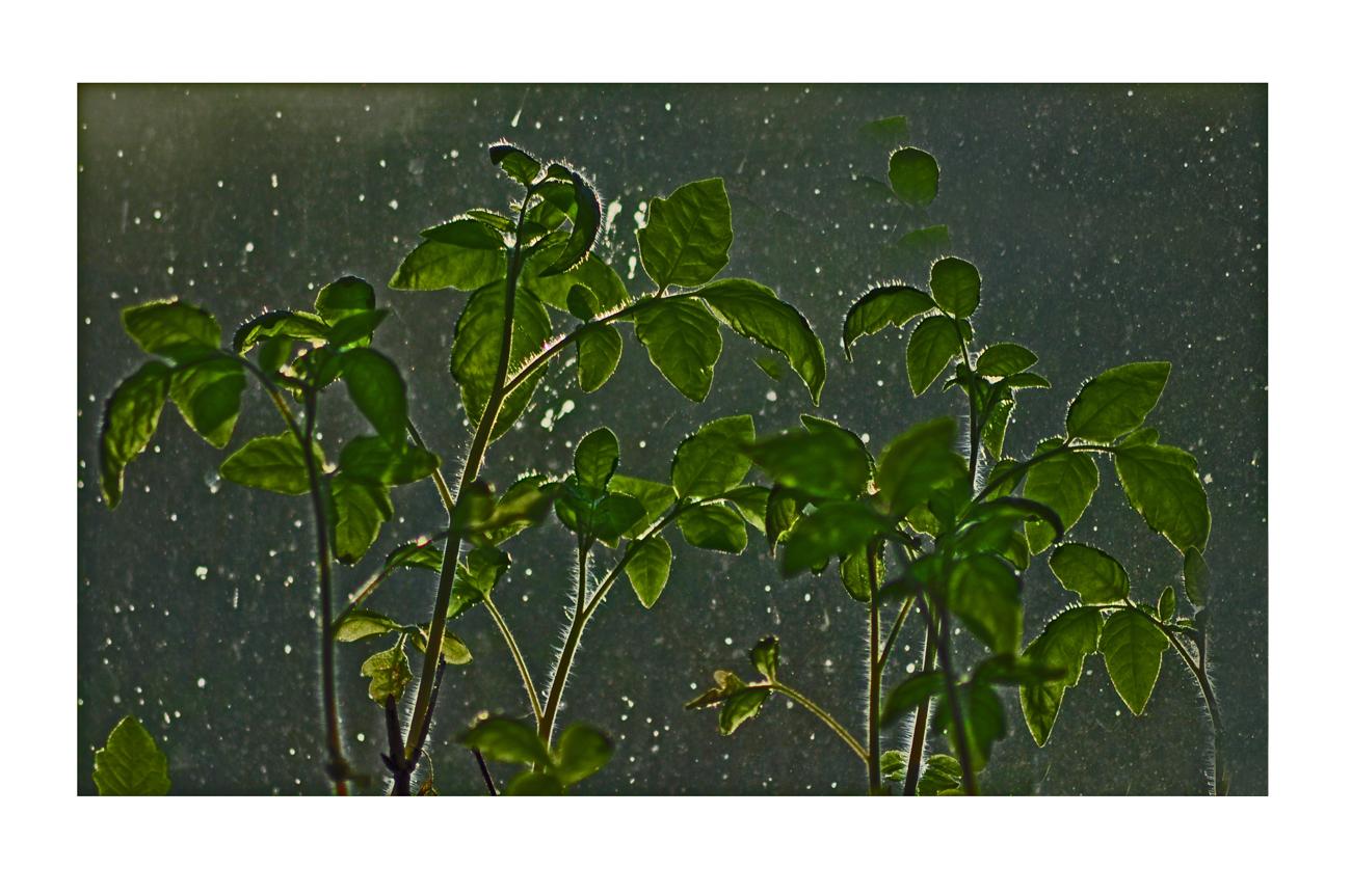 its raining again.....